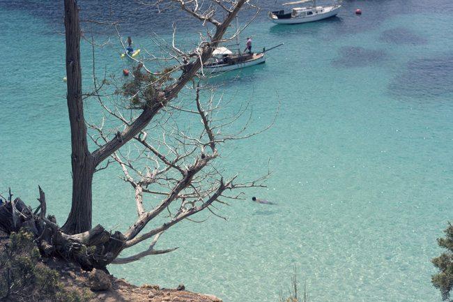 Vacaciones: Verano 2015