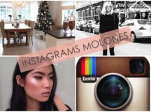 Instagrams favoritos