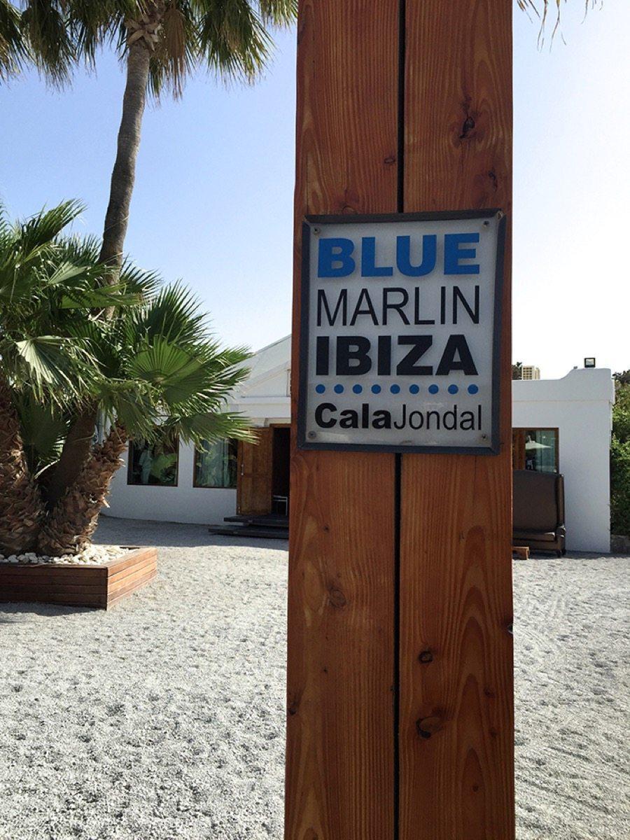 Blue marlin Ibiza Aishawari